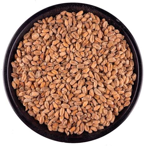 Ireks Dark Wheat Malt