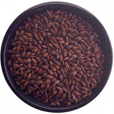 Muntons Roasted Barley